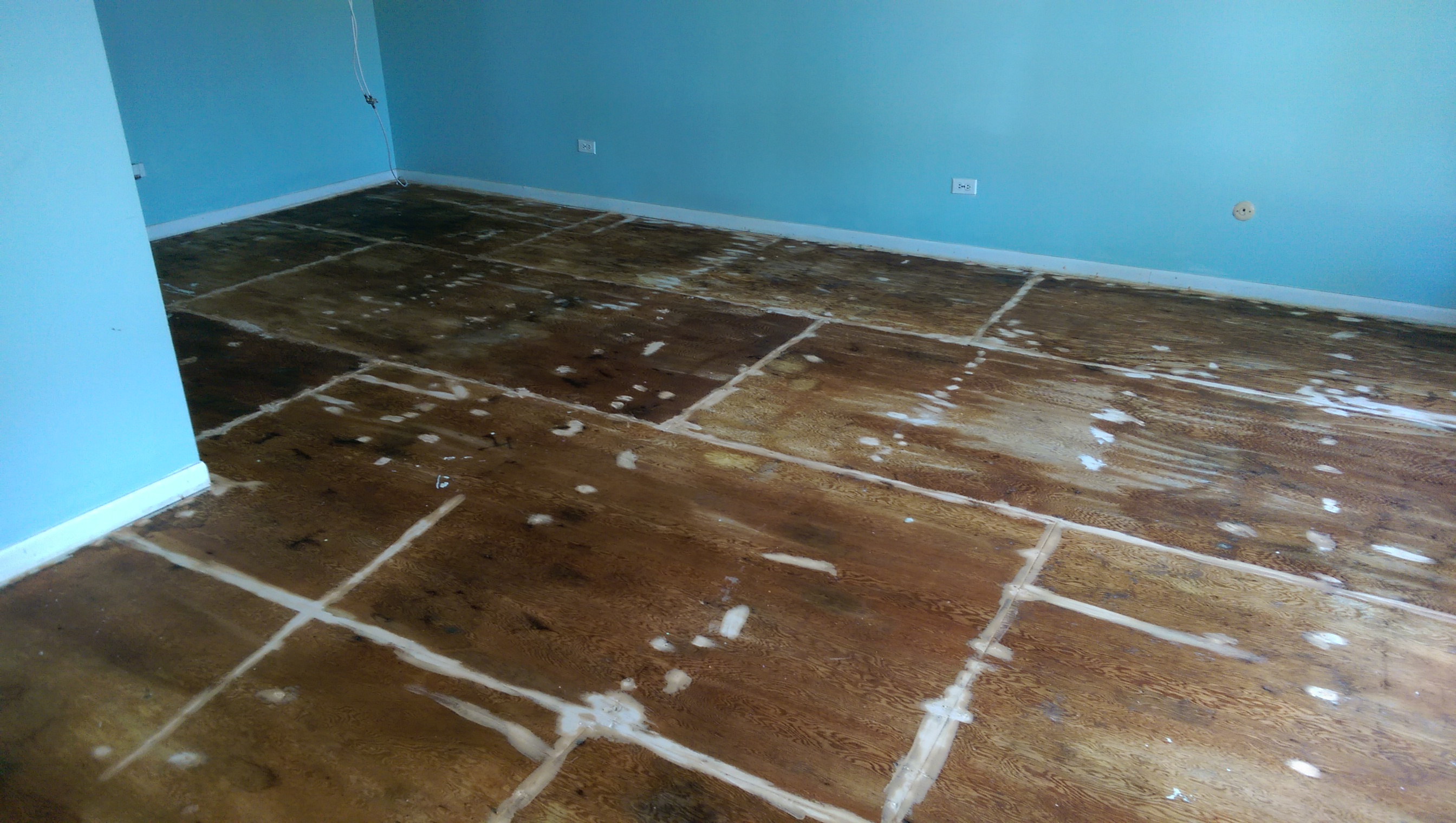 Staining plywood subfloors suburban fervor sanded with pre stain doublecrazyfo Image collections